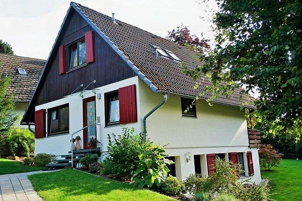 Ferienhaus Seespatz, Diemelsee à Diemelsee - Image 1
