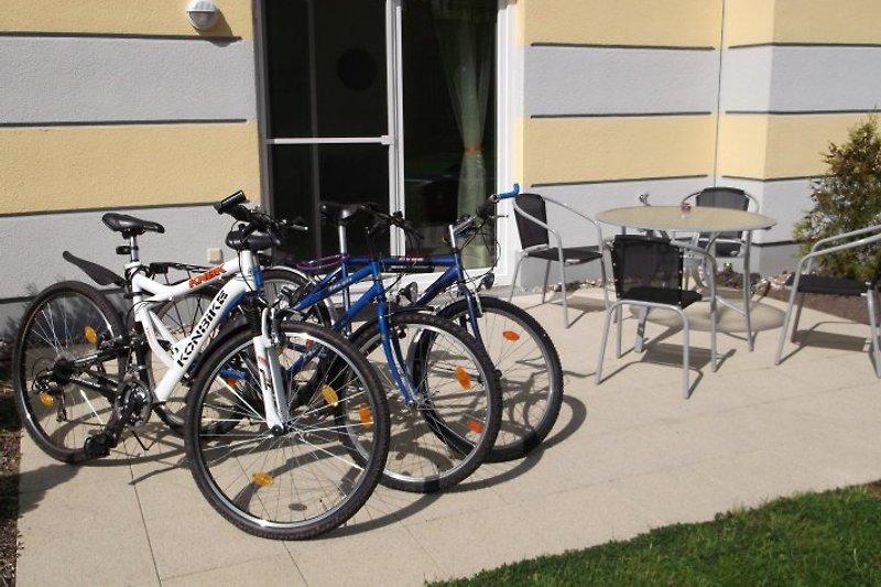Fahrräder stehen zur kostenlos Verfügung