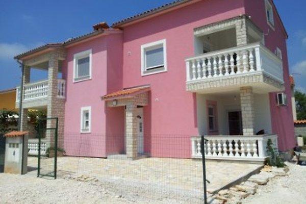 Apartmans Lisicak in Barbariga Betiga - immagine 1