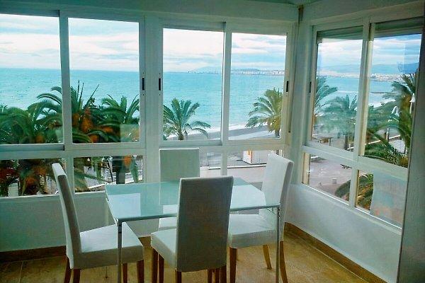 Studio Solymar -direct on the beach à Torrox - Image 1