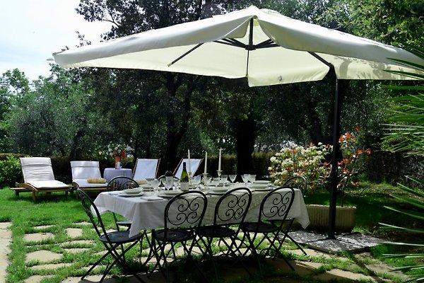 Villa Grande - Ruhe und Luxus in Imperia - Bild 1