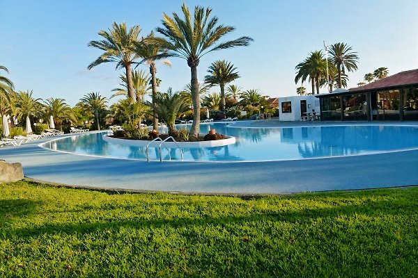 Sun club à Playa del Ingles - Image 1