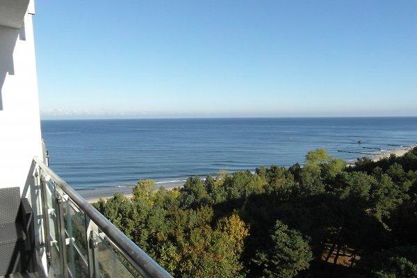 Top apartamento con vistas al mar en Misdroy - imágen 1