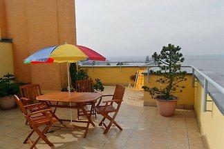Appartement avec terrasse sur le toit