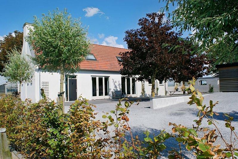 Luxus Ferienhaus Ruigenhoek