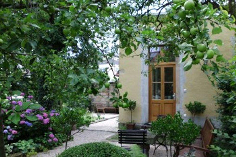 Zugang durch den Garten