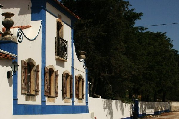 Quinta da Olivia in Obidos - immagine 1