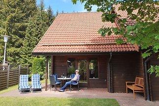 ****Ferienhaus Blauvogel60, Harz
