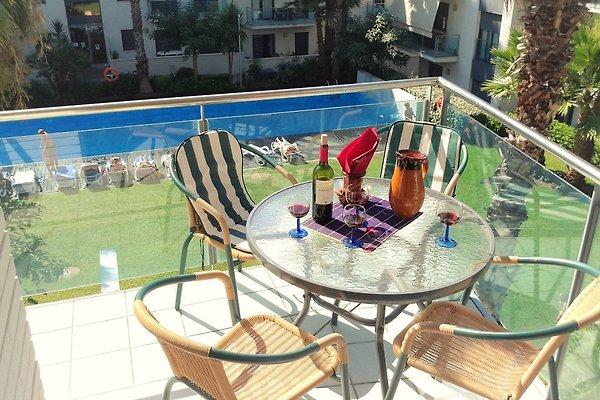 langer Balkon mit Blick auf Pool und Garten