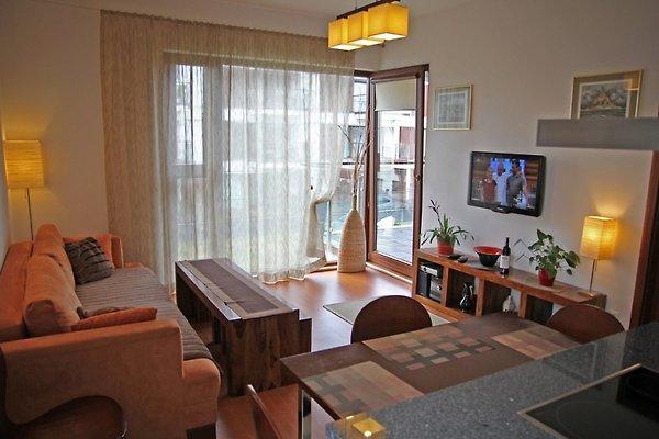 Apartament BALTIC in Swinoujscie - picture 1