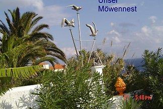 Möwennest et Casa Liesl