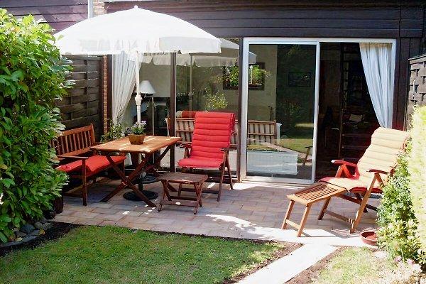 Terrasse mit Gartenhaus und Fahrrädern