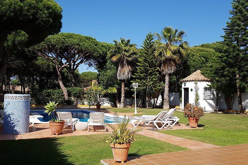Wunderschöner Garten mit großem Pool