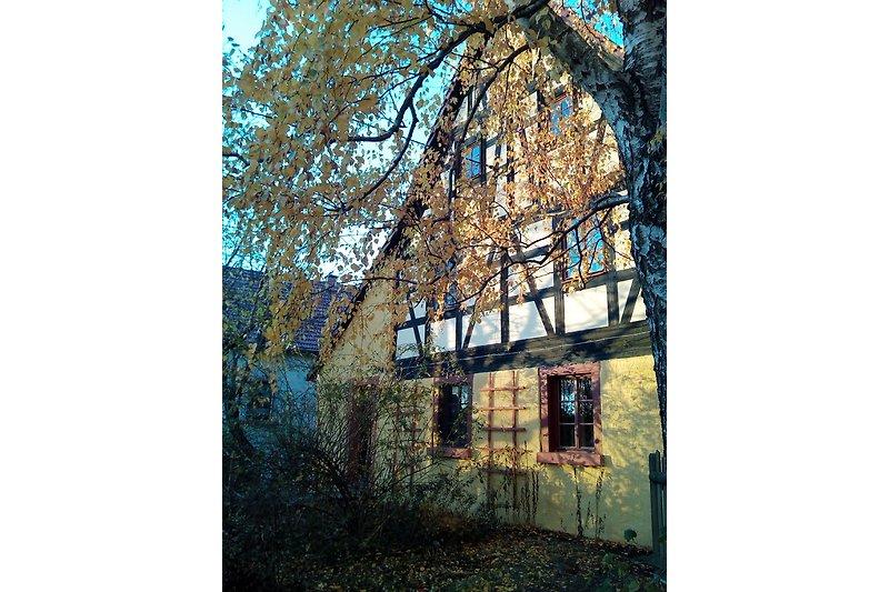 FeWo IM EINKLANG / Leipzig - Bad Lausick
