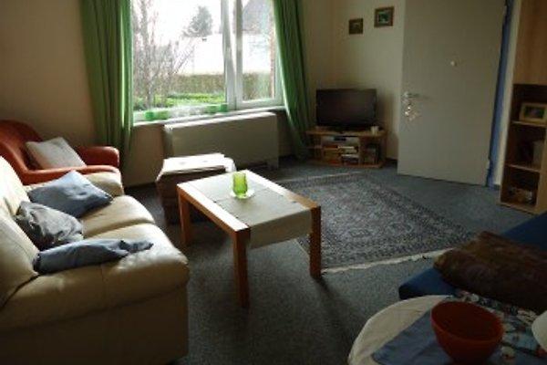 Wohnzimmer Mit Fernseher Und Polsterliege