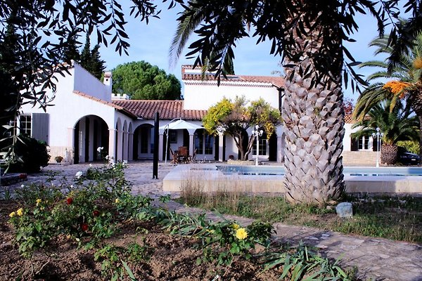 Sicht vom Rosengarten auf Haus