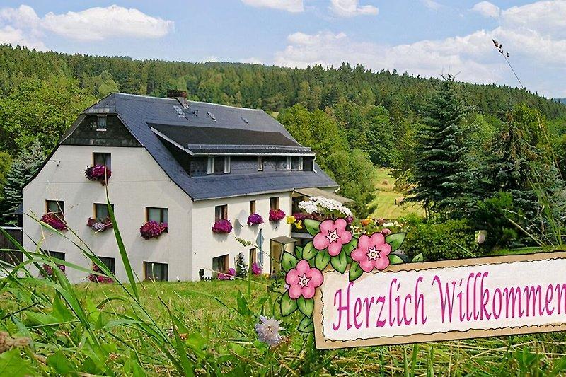 Spitzmühle im Sommer