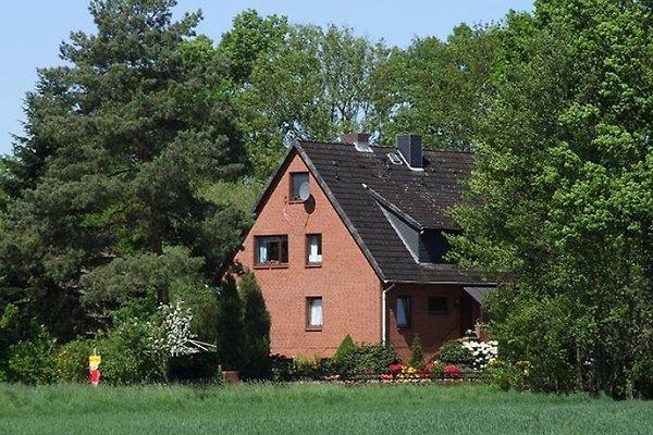 Ferienwohnung Vogelsang in Bleckede - immagine 1