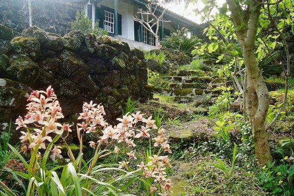 Casa Miragaia en Pico - imágen 1