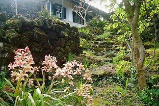Casa Miragaia