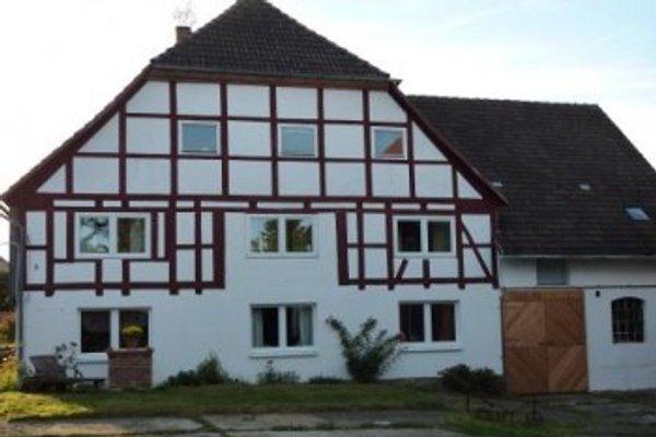 Unter'm Maronenbaum in Lichtenhagen - immagine 1