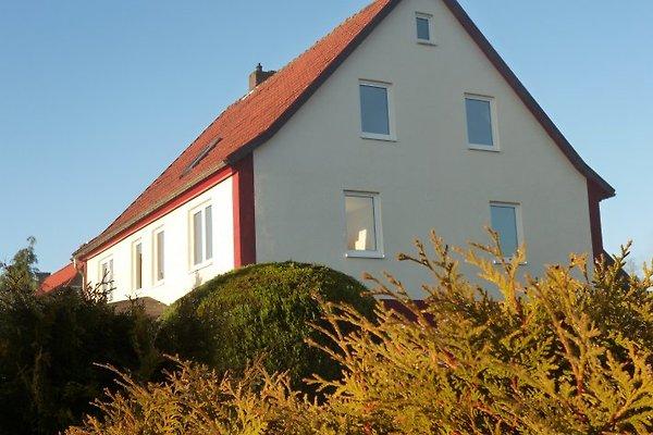 Ferienhaus Feuerstein mit Sauna in Elend - Bild 1