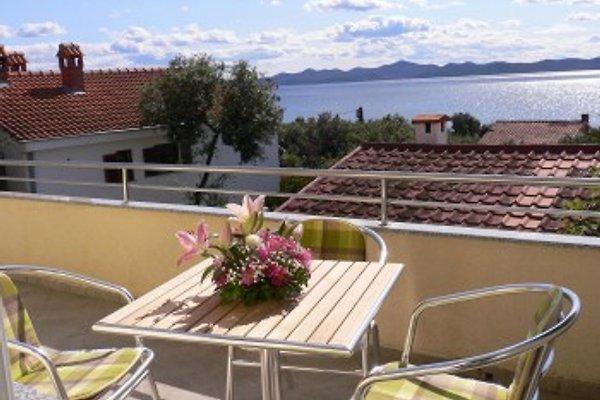 Villa maisons de vacances exclusif Karmen  à Zadar - Image 1