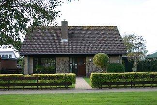 Texel House Klaproos