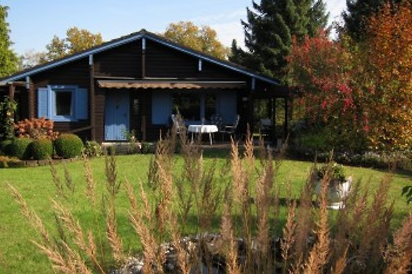 Heideblockhaus-Erika en Neuenkirchen - imágen 1