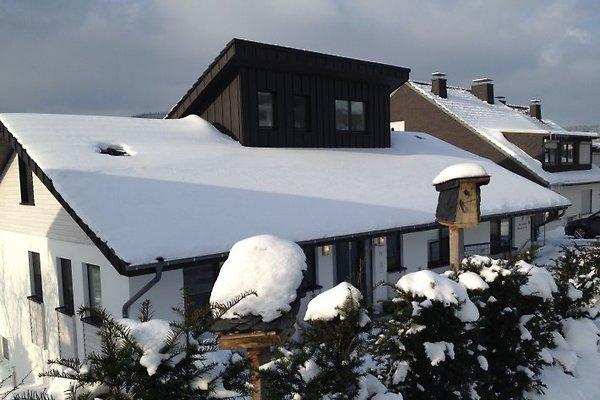 Ferienhaus Silberstern am See in Winterberg - immagine 1