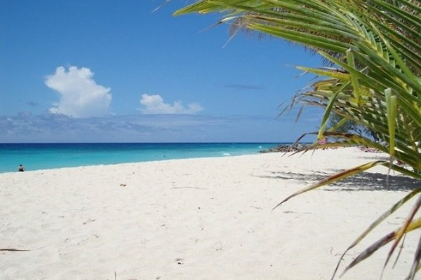 Beachhouse Barbados in St. Lawrence Gap Worthing - immagine 1