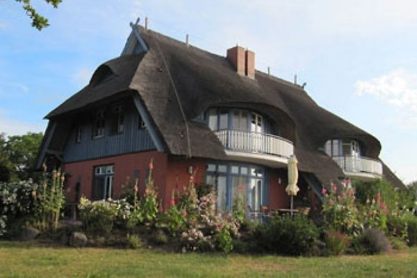 Haus a. Bodden:   malu-benk.de à Wieck - Image 1
