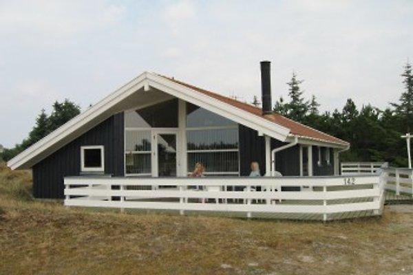 Unser Ferienhaus liegt in einer ruhigen Gegend von andere Ferienhaüser,  Kiefer Büsche und Dünen umgeben