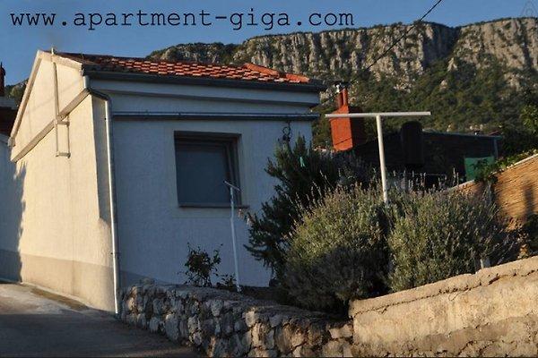 appartamenti Croazia in Bribir - immagine 1