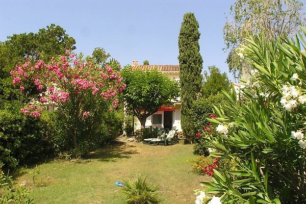 Casa Oleander à Marine de Bravone - Image 1