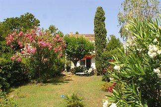 Casa Oleander