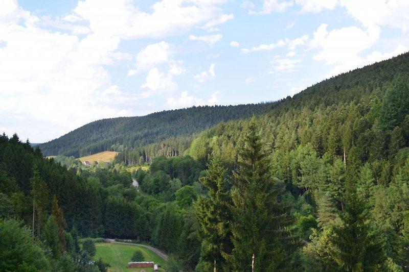 Ausblick vom überdachten Balkon