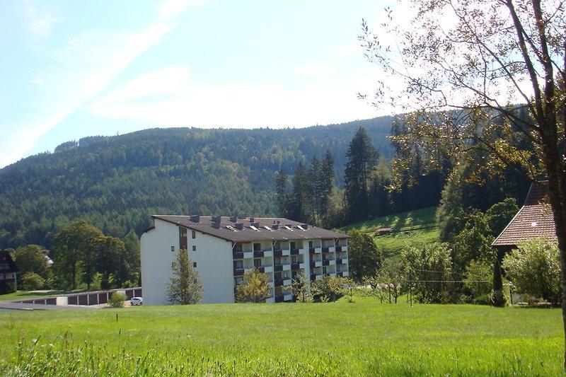 Ferienwohnung im Appartementhaus am Röhrsbächle