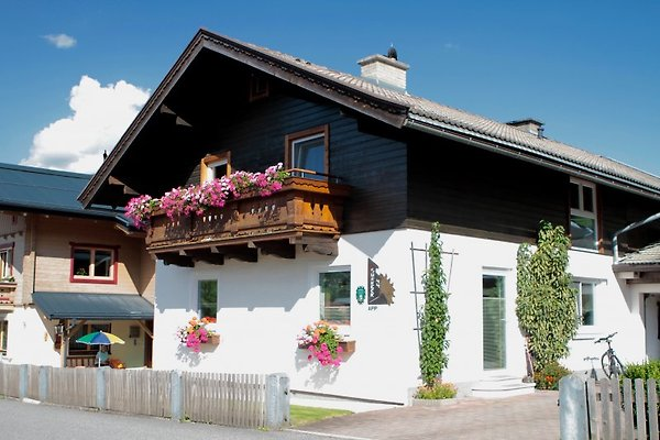 Appartement Sonneck in Hollersbach - immagine 1