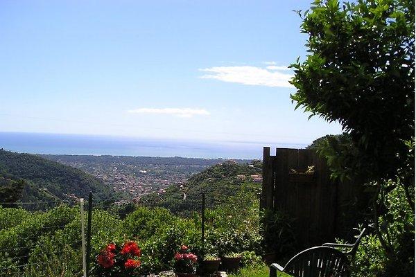 Il Piccolo Nido à Montignoso - Image 1