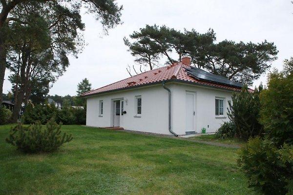 Ferienhaus Marleen à Karlshagen - Image 1