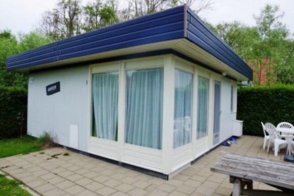Maison OASIS Type 1 à Zoutelande - Image 1