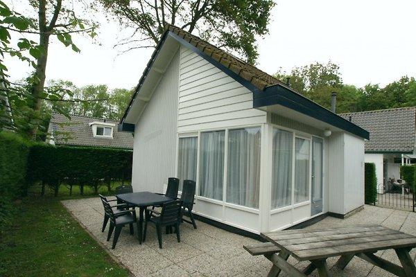 Ferienhaus OASE Typ 1A in Zoutelande - Bild 1