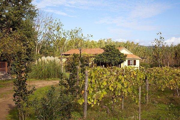 Casa Isa à Gavorrano - Image 1