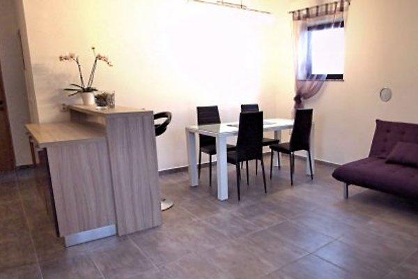 Apartment 4 **** Ferienwohnung Peroj 1 in Peroj - Bild 1