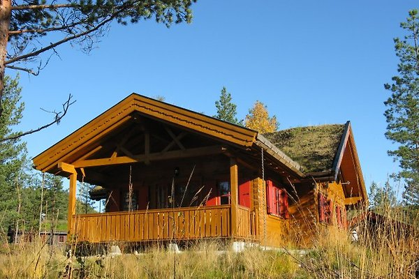 Feriënhaus Jomabu, Gautefall à Drangedal - Image 1