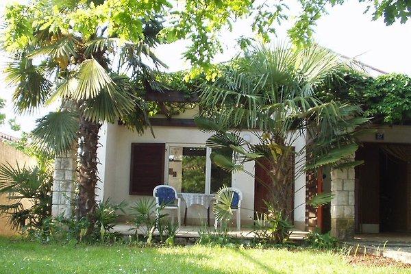 Holiday House Klementina Porec in Poreč - Bild 1