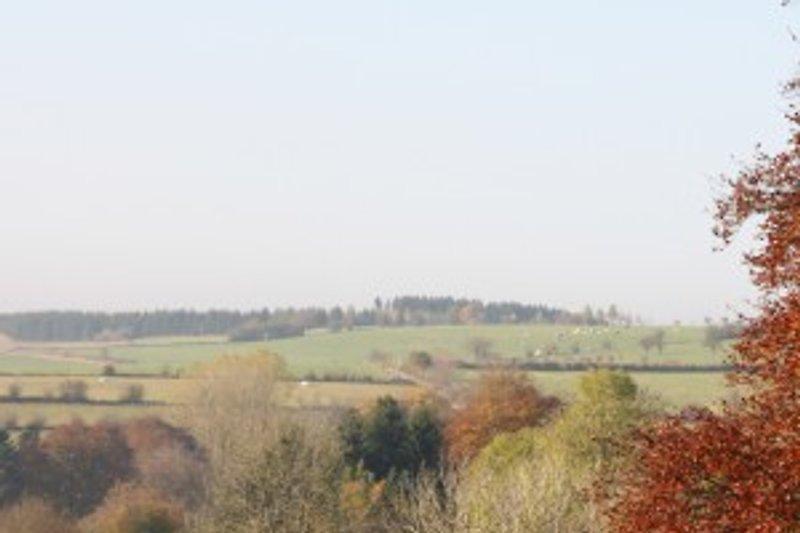 Umgebung, Manderfeld