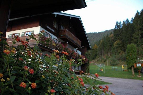 Ferienwohung Meislerlehen 2 à Schönau am Königssee - Image 1