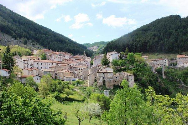 L'Aquila - Parco Nazionale d'Abruzzo in San Sebastiano dei Marsi - immagine 1